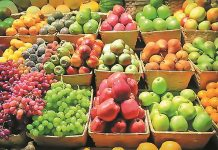 Ξεκινά από σήμερα η πληρωμή της προκαταβολής βιολογικής γεωργίας 21,9 εκατ. Ευρώ