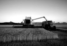 Η υπερθέρμανση του πλανήτη μειώνει τις αποδόσεις στα σιτηρά