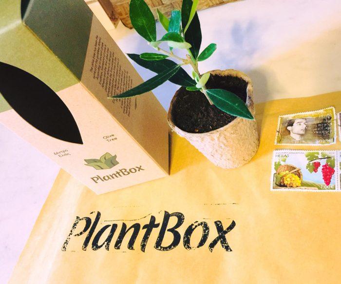 plantbox-elia