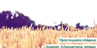 Βέλτιστες πρακτικές για τις καλλιέργειες σιτηρών και ψυχανθών