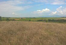 Το 98% της γης στην Περιφέρεια ΑΜ-Θ έχει ήδη αποκατασταθεί από τον ΤΑΡ
