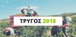 trygos-2018