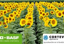 H BASF και η Corteva Agriscience™ ολοκλήρωσαν τη συμφωνία αδειοδότησης για το Σύστημα Παραγωγής Ηλίανθου Clearfield® Plus