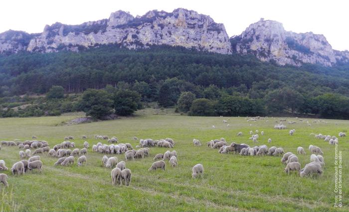 Κοιλάδα της Drôme, Γαλλία