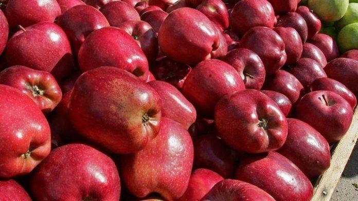 Άνοιξε η αγορά της Ινδίας για τους Έλληνες μηλοπαραγωγούς
