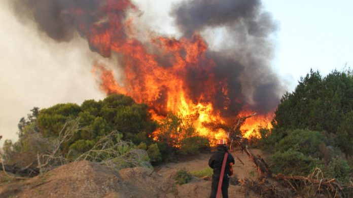 Σε εξέλιξη φωτιά στην Κέρκυρα στην περιοχή Κουλούρα