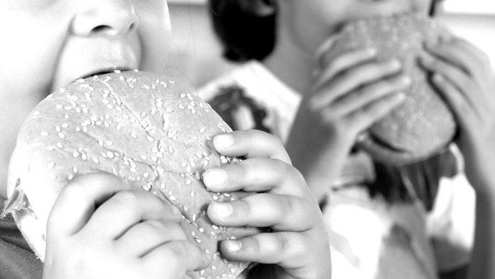 fast-food-paidia