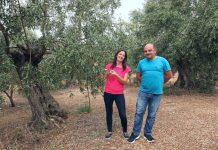 georgia-kostas-doliana-agrotes