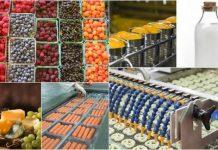 Ημερίδες για την αγροδιατροφή στο πλαίσιο του έργου AGROINNOECO
