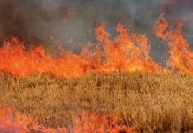 Νεκρός ηλικιωμένος στη Βέροια ύστερα από φωτιά σε χωράφι