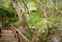 Τα μονοπάτια των νησιών της Δωδεκανήσου καταγράφει η Διεύθυνση Δασών