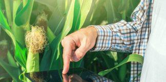 ψηφιακό εργαλείο που χρησιμοποιούν οι αγρότες για την καταγραφή ασθενειών και θεραπειών που χρησιμοποιούν στα ζώα τους