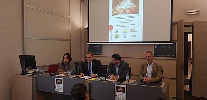 «Όχι» στις αδασμολόγητες εισαγωγές ρυζιού από Ασία λένε έξι ευρωπαϊκές αγροτικές οργανώσεις
