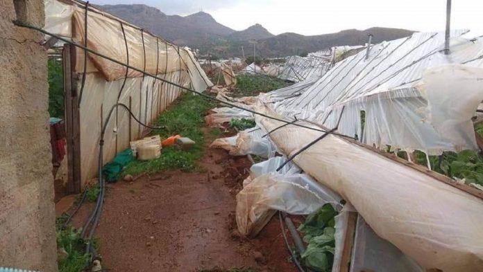 Περισσότερες από 2.400 αιτήσεις αποζημίωσης στον ΕΛΓΑ από παραγωγούς της Δυτικής Ελλάδας