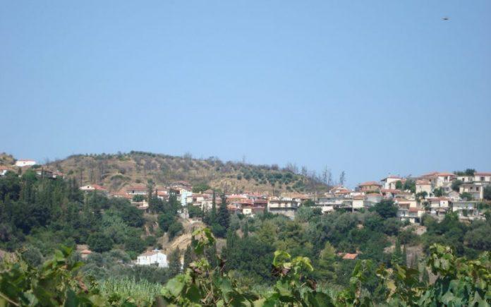 Landowners are excited about Kato Panagia, Ilia