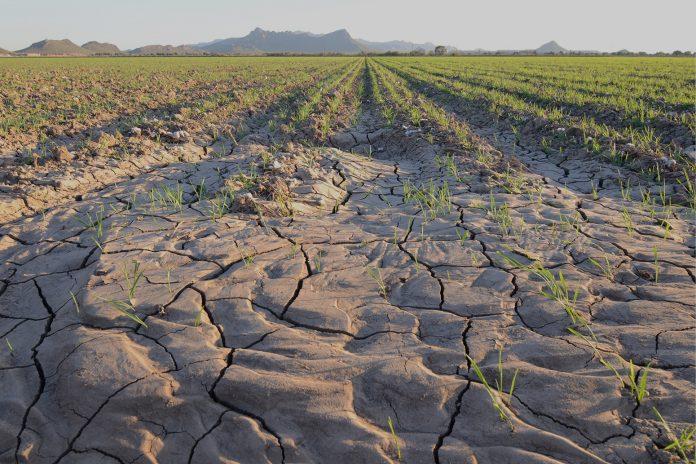 klimatiki-allagi-apodoseis