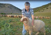 Οι κτηνοτρόφοι δέχονται συμβουλευτική και νέες τεχνολογίες