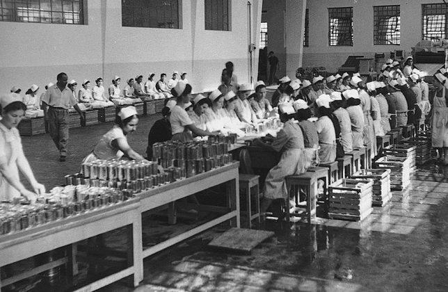 Τα χρόνια εκείνα η παραγωγή βασίζεται κυρίως στα ανθρώπινα χέρια. Το πρώτο εργοστάσιο στο Ναύπλιο έχει το δικό του κυτιοποιίο που κατασκευάζει τις κονσέρβες που γεμίζει η εταιρία.