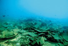 Μουσεία στον βυθό της θάλασσας, προσεχώς στην Αλόννησο και στον Παγασητικό