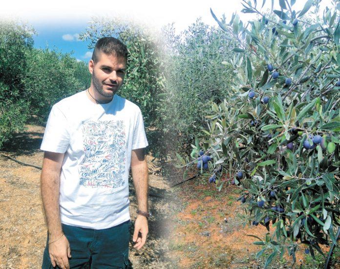 Χρήστος Καμπούρης: Ο ελαιοπαραγωγός που έβαλε την τεχνολογία πάνω από την παράδοση