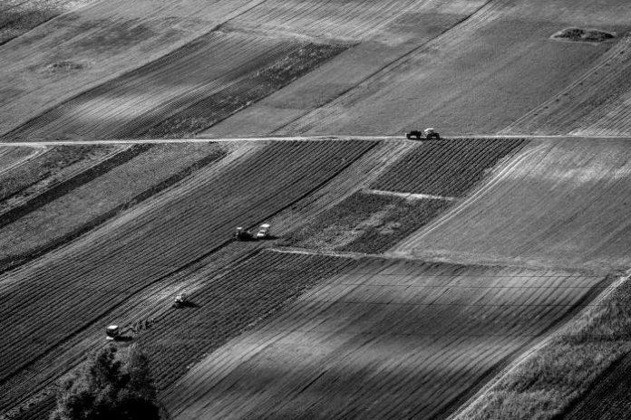 Πάνω από τις μισές αγροτικές εκτάσεις της ΕΕ εξακολουθούν να μισθώνονται αντί να καλλιεργούνται από τον ιδιοκτήτη τους