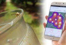texnologia-entomoktono-moges