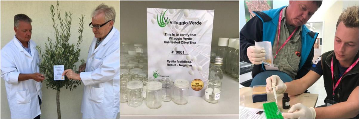Οι δοκιμές πραγματοποιούνται ήδη στις εκμεταλλεύσεις της βρετανικής Villaggio Verde