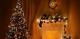 Θεσσαλονίκη: Ανακύκλωση όλων των φυσικών χριστουγεννιάτικων δέντρων από το ΥΠΕΝ