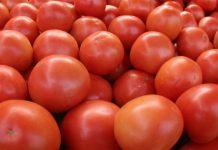 Κατάσχεση και καταστροφή 1 τόνου ντομάτας με υπολείμματα φυτοφαρμάκων