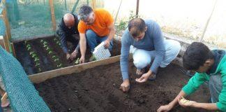 """Παραδοσιακούς σπόρους κηπευτικών θα μοιράσει την Τετάρτη 5/12 το """"Πελίτι"""""""
