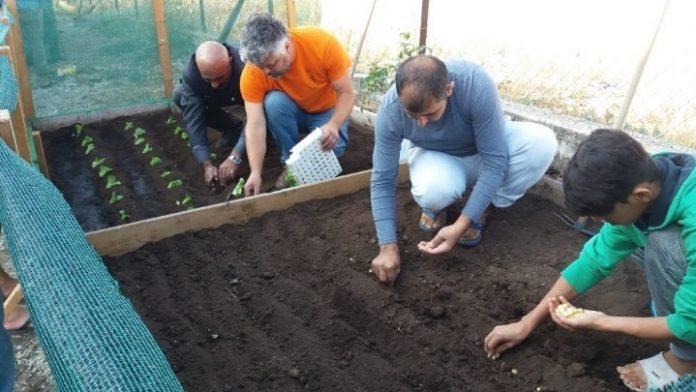 Παραδοσιακούς σπόρους κηπευτικών θα μοιράσει την Τετάρτη 5/12 το