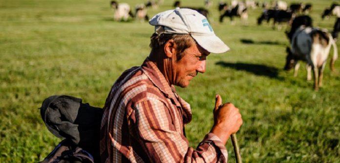 Στο 4,9% η μείωση του αγροτικού εισοδήματος για το 2018 στην Ελλάδα