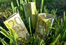 Νέες πληρωμές ΟΠΕΚΕΠΕ ύψους 11 εκατ. ευρώ
