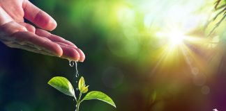 Bayer: Μία από τις κορυφαίες εταιρείες στη προστασία του κλίματος και τη βιώσιμη διαχείριση των υδάτινων πόρων