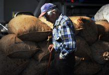 Δικαίωμα για σύνταξη γήρατος την ημέρα που κλείνουν τα 67 χρόνια τους θα μπορούν να θεμελιώνουν από φέτος οι αγρότες καθώς, σύμφωνα τουλάχιστον με όσα προβλέπει ο νόμος του υπουργείου Εργασίας