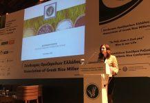 Άνοιξε δρόμους για το ελληνικό ρύζι το 1ο Πανελλήνιο Συνέδριο στη Θεσσαλονίκη