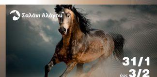 Πάνω από 50 άλογα «καλπάζουν» σήμερα στην 11η Zootechnia 2019