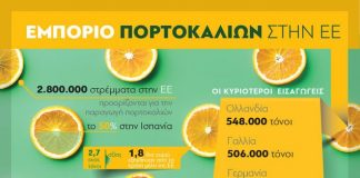 Στους μεγαλύτερους εξαγωγείς πορτοκαλιών της Ευρώπης η Ελλάδα