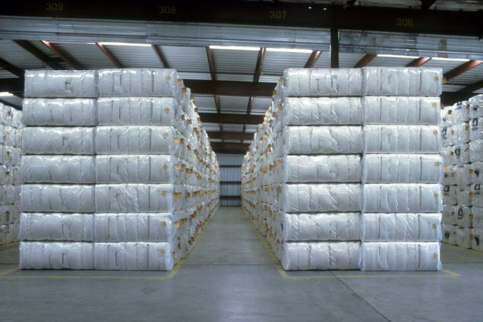 cotton demata