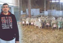 Δημήτρης Μαρογιάννης Έκανα λάθος που δεν έγινα εξαρχής κτηνοτρόφος