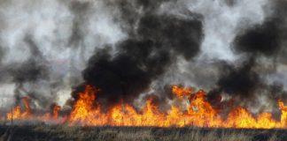 Φλώρινα: Δεκάδες φωτιές από καύση υπολειμμάτων σε χωράφια