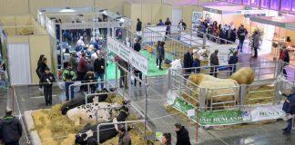 Κατά 30% αυξημένοι σε σχέση με πέρσι, οι εμπορικοί επισκέπτες στην 11η Zootechnia