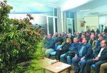Στην περιοχή της πέλλας καλλιεργείται το 70% της πανελλαδικής παραγωγής