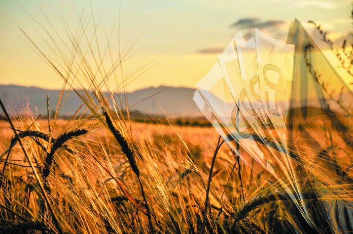 Στις δράσεις του Προγράμματος Αγροτικής Ανάπτυξης 2014-2020 πρόκειται να διατεθεί ποσό ύψους 72.105.592,41 ευρώ