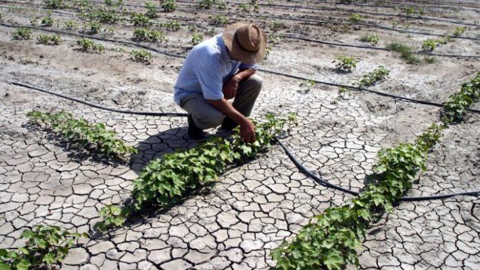 Εσπερίδα για την κλιματική αλλαγή την Τετάρτη 15 Μαΐου στη Νάουσα