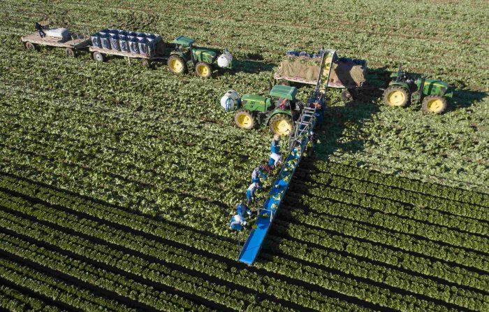 Η φυτοπροστασία επηρεάζει τις καλλιέργειες του ΘΕΣγη