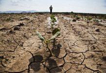 Πού θα χτυπήσουν οι επισιτιστικές κρίσεις το 2019