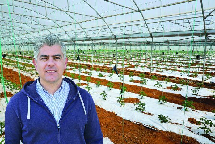 ένα κτήμα βιολογικής καλλιέργειας αγνών κηπευτικών που μυρίζουν Ελλάδα
