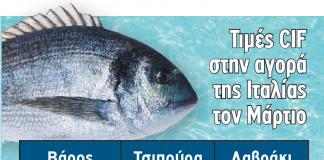 tsipoura-lavraki-infographic