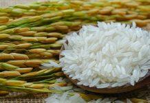 USDA: Αύξηση κατανάλωσης και μείωση παγκόσμιων αποθεμάτων ρυζιού φέτος